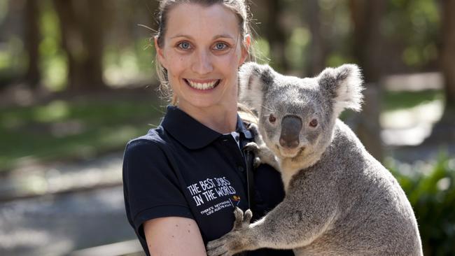 「色」美女笑抓考拉胸全球网友好艳羡-澳洲吃掉蟒美女图片